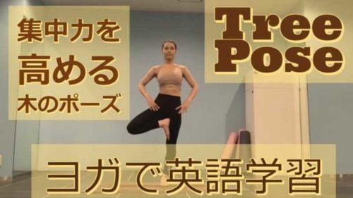 「集中力を高める木のポーズ(Tree Pose)」ヨガで英語学習